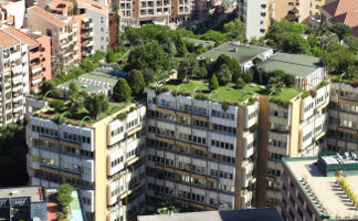 living-green-roof